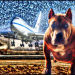 Pit bulls on aircraft:  ANIMALS 24-7 responds to federal proposal