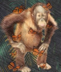 Orangutan with butterflies