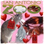 """Cry Me A Cockroach"":  Valentine's Day sadism & the San Antonio Zoo"