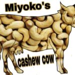 Miyoko's taking the case for vegan cheese to the people as well as the court