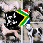More deaths in South Africa despite Pit Bull Federation warning