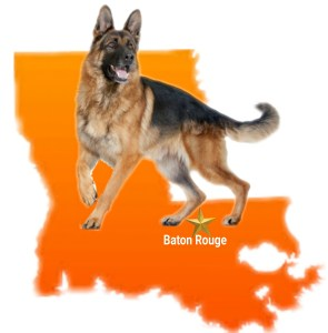 Louisiana map with German shepherd