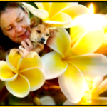 Soi Dog Foundation & Indian Ocean tsunami heroine Gill Dalley,  58