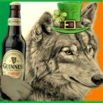 Drove out the snakes?  What did St. Patrick do with the Irish wolves?