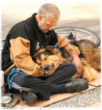 Denver homeless dog