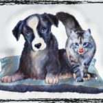 """COVID-19: animal shelter """"experts"""" circle back toward pet overpopulation"""