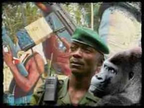 Virunga ranger & gorilla