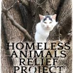 $5 for a cat head:  True stories of animal welfare,  with hands-on tips for helping animals