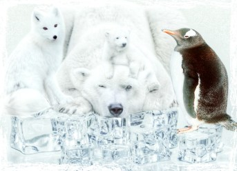 Global warming polar bear penguin fox