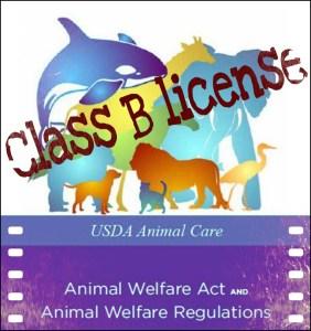 Class B license