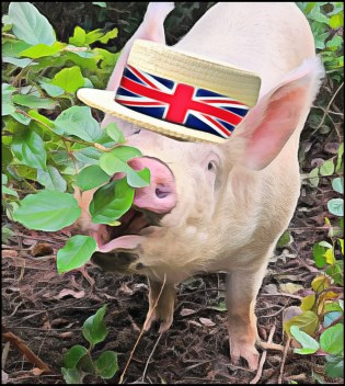 Wilbur the pig in a barbershop quartet hat