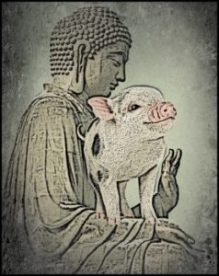 Buddha with pig