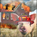 Barn fires begin to be noticed by animal advocates but not yet agribiz