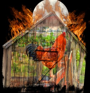 Rooster on a barn with fire