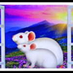 Top GMO mouse lab closing; sponsor turns toward non-animal research