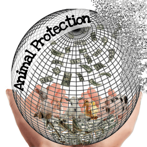 Animal protection globe with animals and money