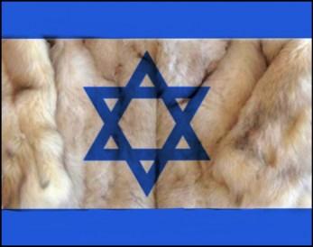 Israeli flag with fur