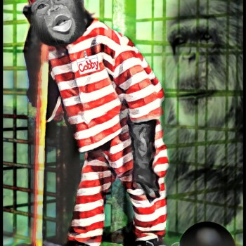 Cobby the chimp with stripes