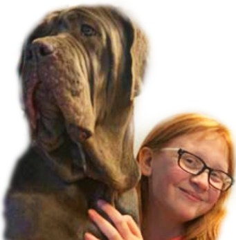 neopolitan mastiff and Skylar Hedrick