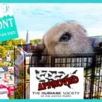 Update:  Vermont Gov Scott signs HSUS bill to cut puppy mill cage sizes
