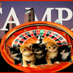 """Rabies roulette"" in Tampa:  the odds favor TNR"