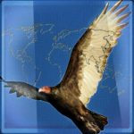 Why vultures are not circling over the drought-parched world