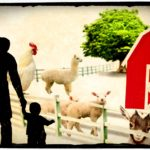 E. coli kills yet another child who visited a petting zoo