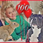 Pit bulls,  bunnies, & advice from Ann Landers on her 100th birthday
