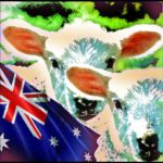 Cruelty charges filed against Aussie live sheep shippers––a first!