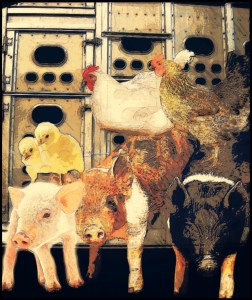 Pigs & chickens, Beth Clifton collage