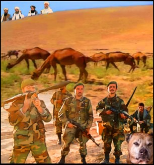 Afghanistan army fighters with Taliban over the hill and a Kabul fighting dog