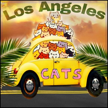 Los Angeles cats in car