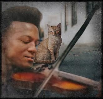 Elijah McClain with violin and cat