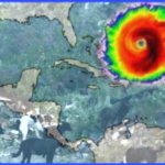 Hurricane Irma:  first reports on animals in the Caribbean islands