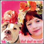 Shelters make mega-payouts to pit bull victims:  what will change?