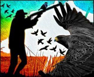 Hunter shoots birds by Beth Clifton