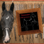 Could soring horses leave top Republicans limping in red-state Tennessee?
