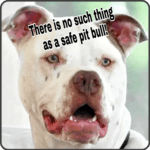 "Miami pit bull ban update, 2017 edition: ""No pit bulls"" still means ""No pit bulls"""