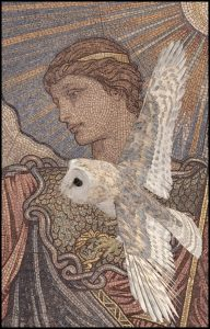 Minerva & owl