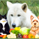 Can Brother Wolf sell going meatless to dog-&-cat shelters and rescues?