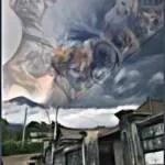 "Dog rescue on the slopes of Agung,  Bali's erupting ""Mount Doom"""