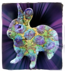 Colorful rabbit   Beth Clifton collage   ANIMALS 24-7