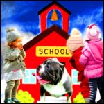 """Educate yourself"":  pit bulls in schools run amok"