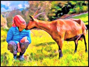 Agitu Ideo Gudeta and a goat
