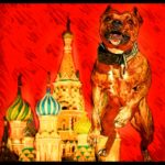 """Russia bans """"dogs of dangerous breeds"""" under new humane law"""
