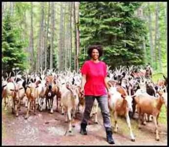 Agitu Ideo Gudeta walk with goats