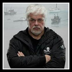 Paul Watson. (Sea Shepherd Conservation Society photo)