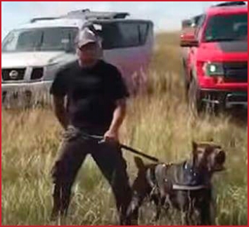 Security guards set dogs on Sioux demonstrators at Standing