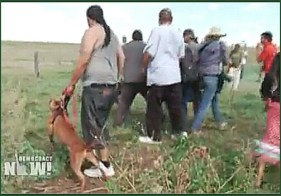 One Native American demonstrator held a harnessed pit bull. (Democracy Now photo)