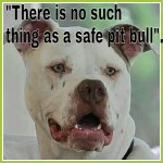 "Miami residents:  ""No pit bulls"" means ""No pit bulls"""